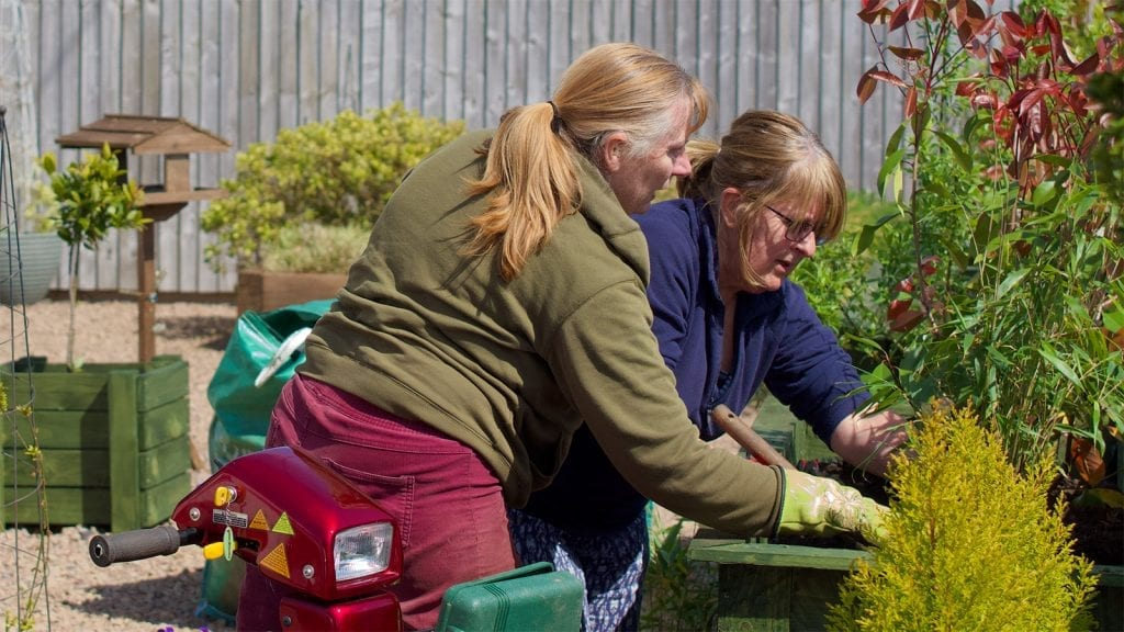 Volunteer and client gardening
